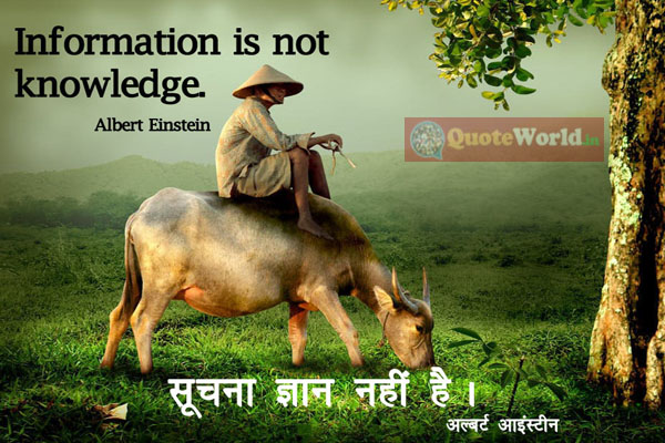 Hindi Translation of Albert Einstein Quotes