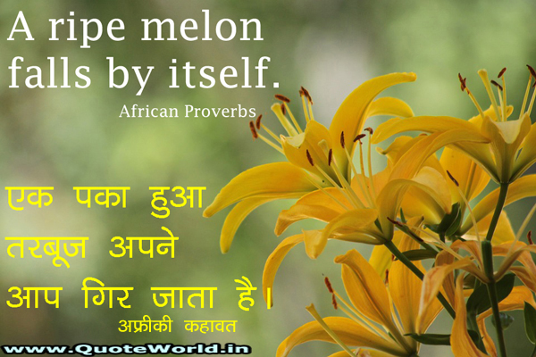 Famous African quotes